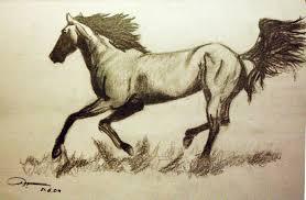 indian horse pencil drawings