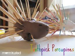 toothpick porcupine project easy and cute crafty kids
