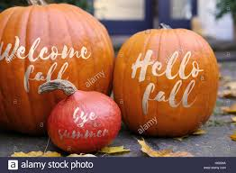 fall pumpkins background pictures welcome fall pumpkins background stock photo royalty free image