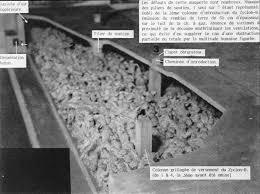 chambres a gaz chambres à gaz zyklon b vincent reynouard