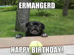 Happy Birthday Dog Meme - ermahgerd happy birthday berks dog quickmeme