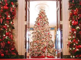 white house christmas trees special themes selected by the first
