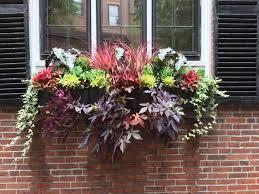 Flower Shops In Surprise Az - best 25 fresh flower delivery ideas on pinterest flower