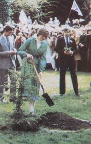 394 best charles and diana images on pinterest lady diana