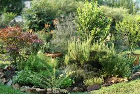 Herb Garden Layout How To Create An Italian Herb Garden Herb Gardening Help