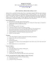 Security Officer Job Description For Resume Personal Statement Sample Essays Law Sample Of An Outline For A