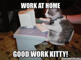 Working From Home Meme - image gif w 480 c 1