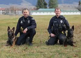 belgian malinois vest missoula police department adds two new k 9 u0027s kpax com