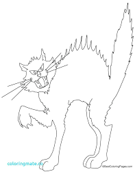 warrior cats coloring pages sad warrior cat coloring pages warrior cat coloring pages warrior cats