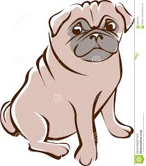 pug outline drawing stock vector image of icon pedigree 96473650