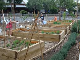 landscaping ideas for schools u2014 home landscapings best landscape