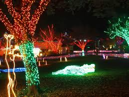 Zoo Lights Pt Defiance by Christmas Lights In The Pacific Northwest Pacific Northwest
