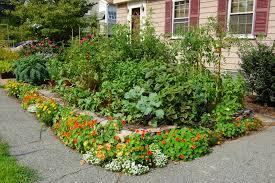 Front Yard Vegetable Garden Ideas Front Yard Vegetable Garden Edible Landscape Ideas Pinterest