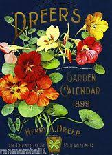 vintage seed packets 1899 dreer s garden vintage flowers seed packet catalogue