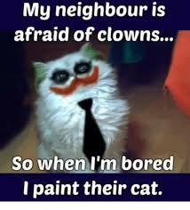 Bored Memes - my neighbour is afraid of clowns so when i m bored i paint their cat