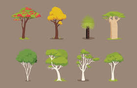 various tree vector items free vector stock