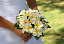 wedding flowers hawaii hawaiian wedding bouquet weddings in hawaii