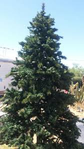 11 foot artificial tree pre lighted household in apache