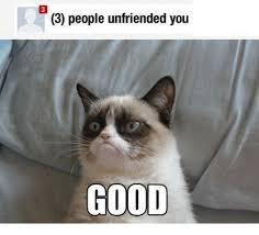 Good Meme Grumpy Cat - 3 people unfriended you good grumpy cat meme on me me