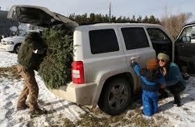jeep christmas tree mason tree farm opens for christmas saskatoon starphoenix