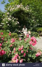 Ohio Botanical Gardens Garden At Cleveland Botanical Gardens Cleveland Ohio Stock
