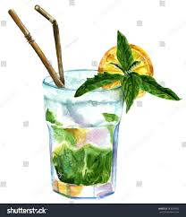 mojito cocktail watercolor drawing mojito cocktail mint leaves stock illustration