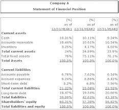 the common size financial statement analysis vertical and horizontal