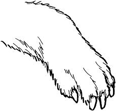 polar bear paws clipart 59