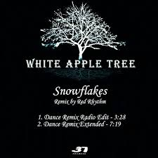 white apple tree snowflakes hq