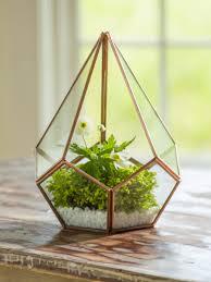 glass terrarium teardrop tabletop terrarium small terrarium