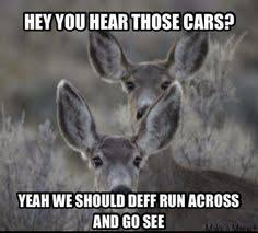 white faced deer memes