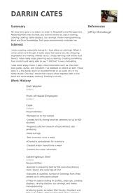 Sous Chef Resume Sample by Dish Washer Resume Samples Visualcv Resume Samples Database