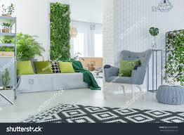 bright living room sofa armchair pouf stock photo 595655690 bright living room with sofa armchair pouf and green plants