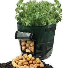 Bag Gardening Vegetables by Potato Grow Bag Green Plastic Garden Vegetables Planter Bag Access