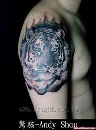 black and white tiger design for viewer com