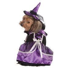 Dog Halloween Costumes Girls 36 Rubie U0027s Pet Shop Brand Costumes Images Pet