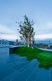 best 20 roof gardens london ideas on pinterest roof gardens