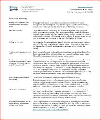 executive summary resume exle exle summary for resume template executive 2 page statement