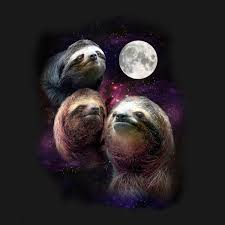 3 Wolf Moon Meme - three sloth moon tshirtvortex