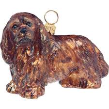 485 best cavalier king charles spaniels images on