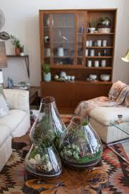 best 25 coffee table planter ideas on pinterest indoor