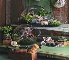 f1ee0ee9987453338e95fb4620721bbd diy indoor garden containers