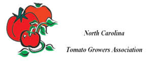 carolina tomato growers association nc state extension
