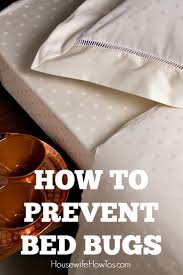 How To Get Rid Of Bed Bugs At Home How To Prevent Bed Bugs Simple Steps To Protect Your Home And Family