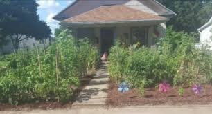 front yard vegetable garden u0027 war is on in missouri