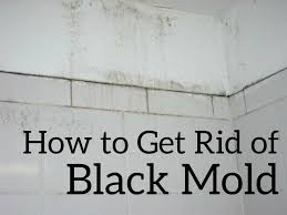 Foundation Sealer Lowes by Mold Sealant Lowes Painting Over White Zinsser Killing Primer