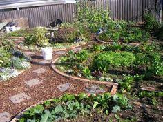stop landscaping foodscape instead permaculture permaculture