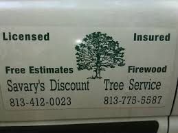 savary discount tree service thonotosassa fl 33592 homeadvisor