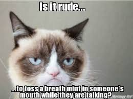 Frowning Cat Meme - 2193 best grumpy cat images on pinterest funny stuff funny things