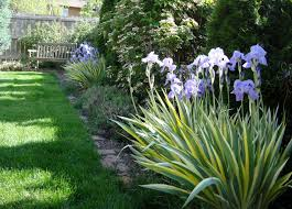 Garden Boarder Ideas Landscaping Along A Fence Ideas With Photos Am A Big Fan Of